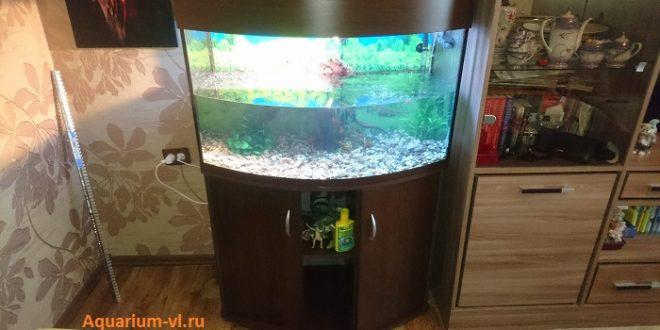 аквариум панорама 200 л