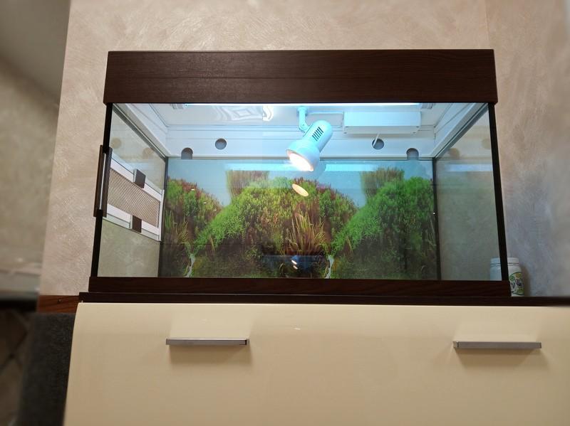 террариум 150 литров для черепахи